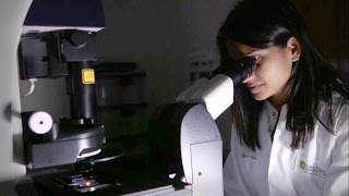 Download The Cape Town HVTN Immunology Laboratory Video