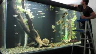 Download Huge Aquarium Video