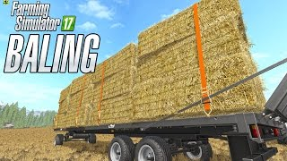 Download Straw Baling in Goldcrest Valley Video