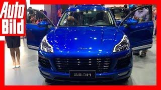 Download Kopien auf der Auto Shanghai (2017) Details/Erklärung Video