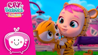 Download Take care of Tiggy 🐯 CRY BABIES MAGIC TEARS 💕 Video