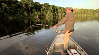 Download PIRAIBA FISHING - SURINAME - ANDREE'S EXPEDITIONS Video