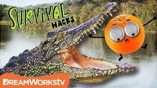 Download How to Survive an ALLIGATOR Attack | SURVIVAL HACKS Video