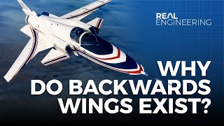 Download Why Do Backwards Wings Exist? Video
