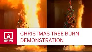Download Christmas Tree Fire Video