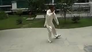Download 田兆麟傳楊式中架太極拳 田秉淵 Yang Style Middle Frame Taichi Quan -Tian Bingyuan Video