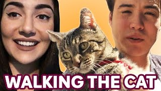 Download Walking Our Cat For The First Time • Saf & Tyler Video