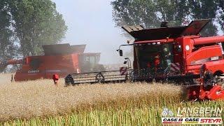 Download Langbehn Landmaschinen. Vorführtour 2014 mit 2 Case 8230 und 6130 Mähdrescher Video