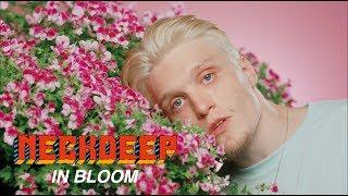 Download Neck Deep - In Bloom Video