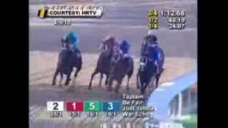 Download Zenyatta Greatest Race Horse Of All Time! Montage - All 19 Wins Video