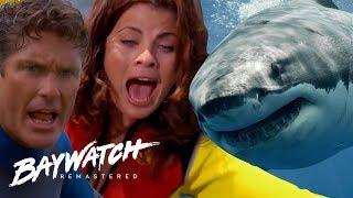 Download SHARK HUNT! A GREAT WHITE SHARK Attacks Mitch & Caroline! Baywatch Remaster Video