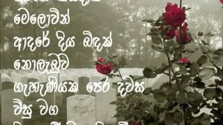Download Rosa Kusumak Pipevi-Nanda Malani රෝස කුසුමක් පිපේවී Video