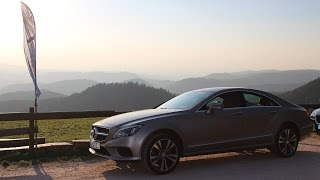 Download Driving in the Black Forest in Germany | AutoblogVR Video