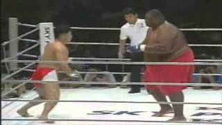 Download 600lbs Sumo Vs 169lbs MMA Fighter Video