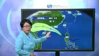 Download 新聞發佈會(08月26日中午12時) - 高級科學主任李淑明 Video