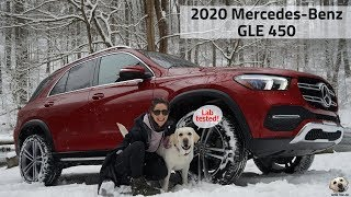 Download 2020 Mercedes-Benz GLE 450: Andie the Lab Review! #MercedesBenz #LabTested #allkindsofstrength Video