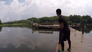Download How to Perform a Skip Cast with a Baitcasting Reel by 1Rod1ReelFishing Video