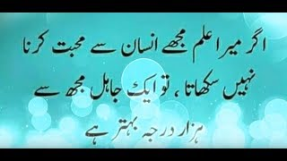 Download Islamic Quotes About Love In Urdu Video