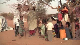 Download Afflux de réfugiés maliens à Tahoua, Niger (novembre - décembre 2013) Video