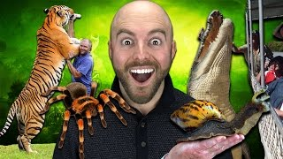Download 10 Abnormally Large Animals That ACTUALLY EXIST! Video