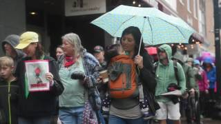 Download Video: Scenes from Knoxville's Women's March Video