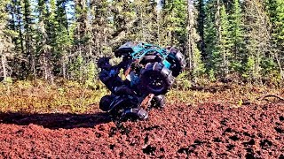 Download Sand Paddles vs Muskeg!! Video