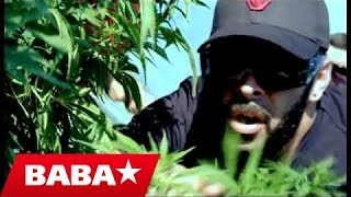 Download BABASTARS - HIGH (Official Video 2012) Video
