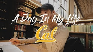 Download A Day In My Life at UC Berkeley Video