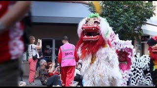 Download Chinese New Year Parade and Lion Dance 2014 - Honolulu, Hawaii Video
