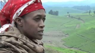 Download Rural Poverty - In Their Own Words: Rwanda Video