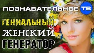 Download Словогрыз: Гениальный женский генератор (Познавательное ТВ, Артём Войтенков) Video