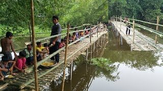Download Build Bamboo Bridge For Villagers To Cross Sub River - Chicken Hodgepodge Cooking To Feed Builders Video