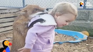 Download Kids Rescue Animals: Kids Go Above And Beyond To Rescue Animals   The Dodo Best Of Video