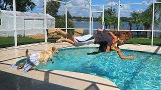 Download Throwing my Girlfriend in the Pool! (Revenge Prank) Video