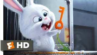 Download The Secret Life of Pets - Busting You Out! Scene (3/10) | Movieclips Video