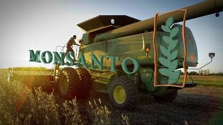 Download Mexico builds wall to keep out Monsanto's GMOs Video