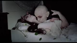 Download A Film Score to the Sacrifice Scene - Nosferatu the Vampyre (1979) Video