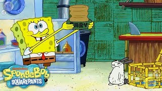 Download SpongeBob Adopts a Sea Bunny! 🐰 EXCLUSIVE Sneak Peek | SpongeBob SquarePants | Nick Video