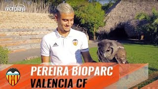 Download ANDREAS PEREIRA VISITS THE BIOPARC ON WORLD ANIMAL DAY Video