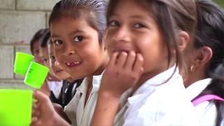 Download Conoce el trabajo de la FAO en 15 países de América Latina y el Caribe por más de 40 años Video