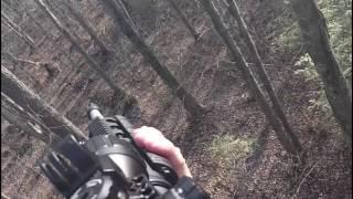 Download Deer Hunting Michigan Video