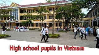 Download High school pupils in Vietnam | Travel In Vietnam Video