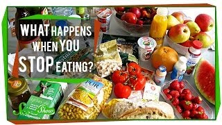 Download What Happens When You Stop Eating? Video
