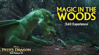 Download Magic in the Woods 360 Video Experience - Pete's Dragon Video