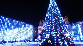 Download Christmas Tree Lighting Ceremony and light show performance at The Queen Mary: CHILL 2017 Video