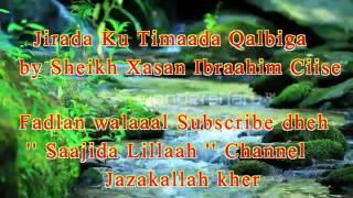 Download Muxaadaro Xanuunada ku dhaca Qalbiga by Sheikh Xasan Ibraahim Ciise Xafiduhullaaah Video
