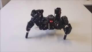 Download Quadruped robot 4DOF Video