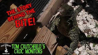 Download TOM CRUTCHFIELD'S CROCODILE MONITORS! (the story behind the bite) Video