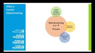 Download Webinar - Gender Mainstreaming: Strategies to Address Gender Inequality Video