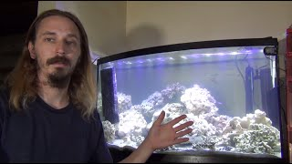 Download You NEED to KNOW this before getting a FISH TANK! Video